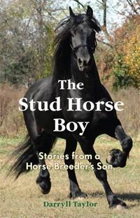 Stud Horse Boy