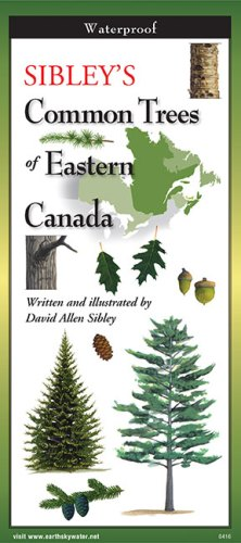 Sibley's Common Trees of Eastern Canada