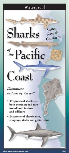 Sharks & Rays of the Pacific Coast -Folding Guide