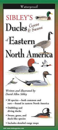 Sibley's Ducks, Geese & Swans of Eastern North America – Folding Guide
