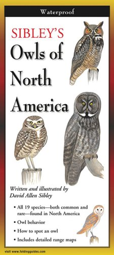 Sibley's Owls of North America – Folding Guide
