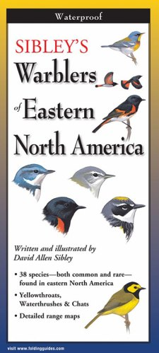 Sibley's Warblers of Eastern North America
