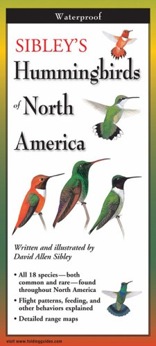 Sibley's Hummingbirds of North America – Folding Guide
