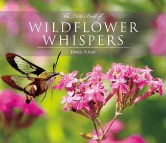 The Little Book of Wildflower Whispers