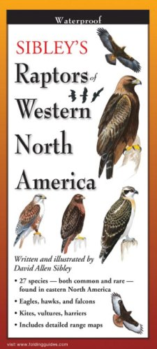 Sibley's Raptors of Western North America – Folding Guides