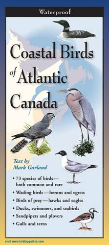 Coastal Birds of Atlantic Canada – Folding Guide