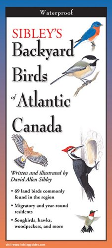Sibley's Backyard Birds of Atlantic Canada – Folding Guide