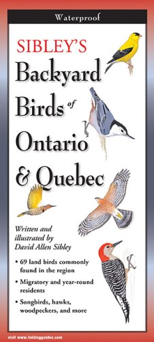 Sibley's Backyard Birds of Ontario & Quebec – Folding Guide