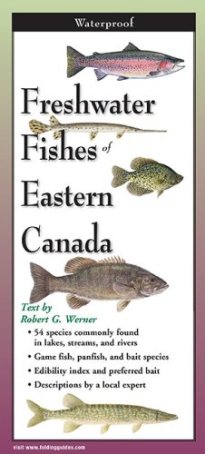 Freshwater Fishes of Eastern Canada – Folding Guide