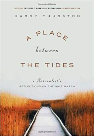 Place Between the Tides