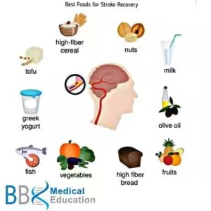 Diet Meal Plan,  Food Timetable + Nigerian Foods for Stroke Patients