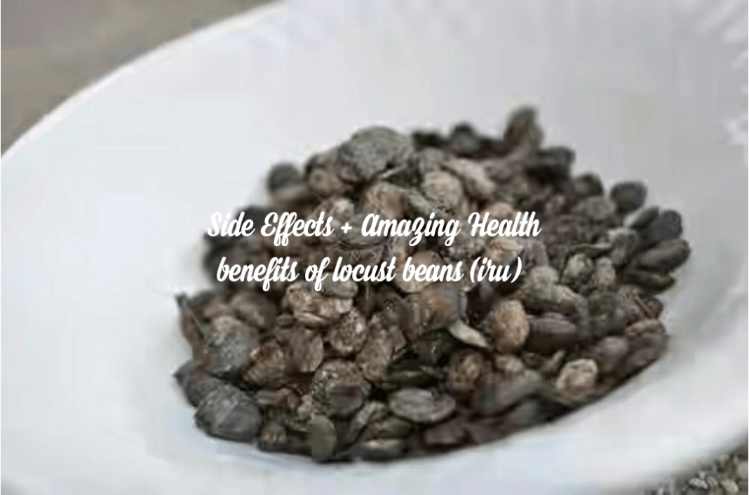 Side Effects + Health Benefits of Locust Beans |Iru|Ogiri