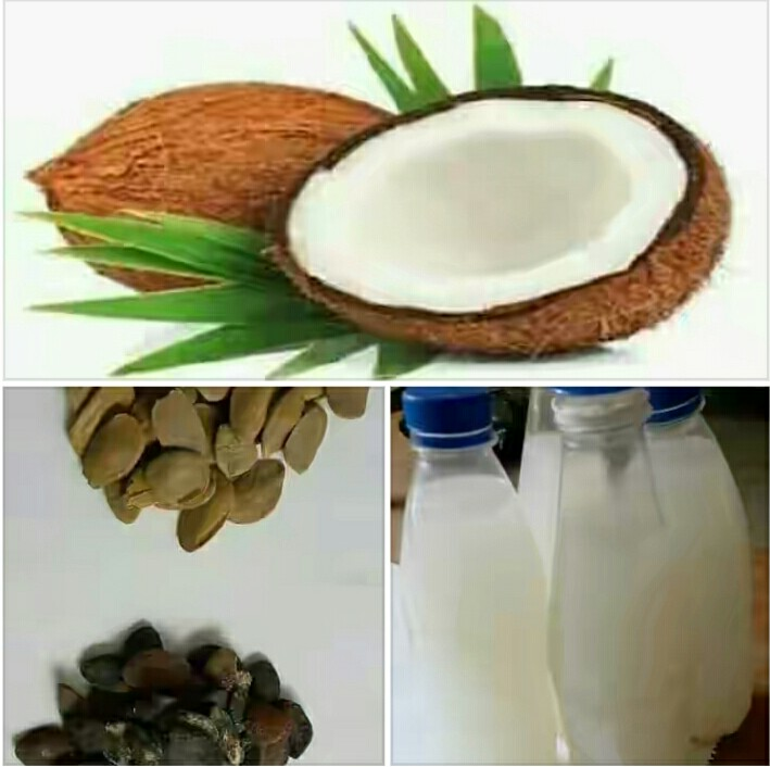 Benefits of abere seed and coconut water