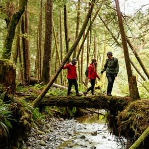 Rainforest Hike Nimmo Bay