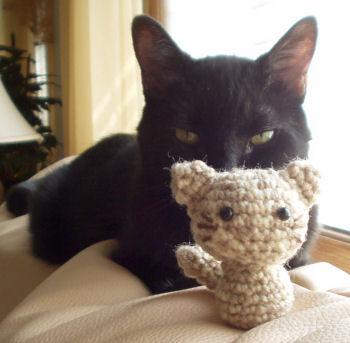 Miuku the cat