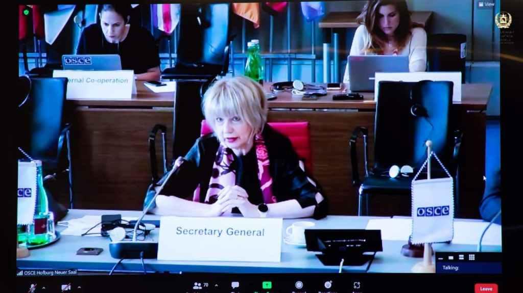 هلگا شمید، سکرتر جنرال سازمان امنیت و همکاری اروپا