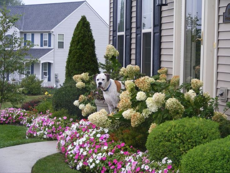20 Simple But Effective Front Yard Landscaping Ideas on Landscape Front Yard Ideas  id=66472