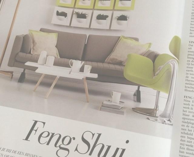 Feng Shui Toegepast, artikel Talkies, Nina Elshof Feng Shui