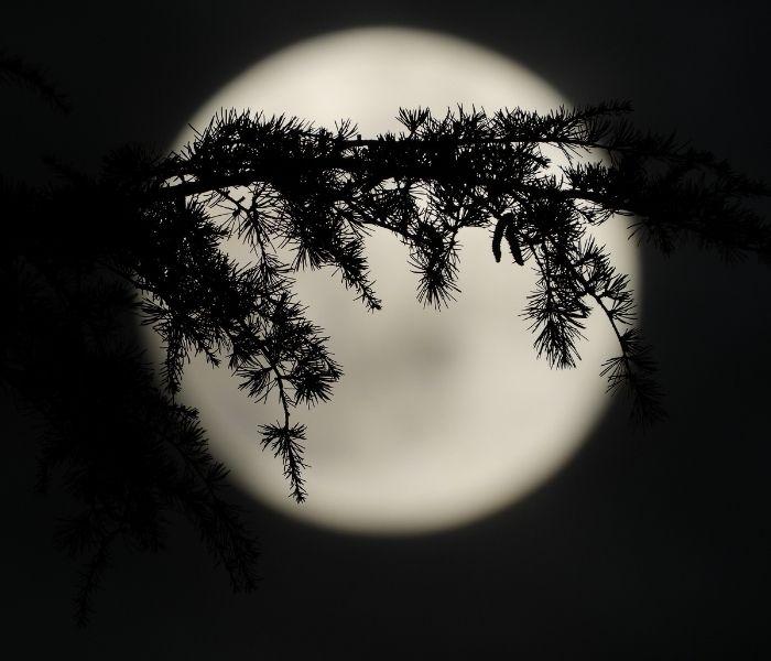 volle maan oktober 21