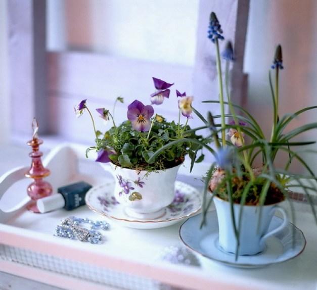 Forårblomster i kopper, foto Nina Ewald