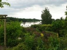 Elbe_Hochwasser