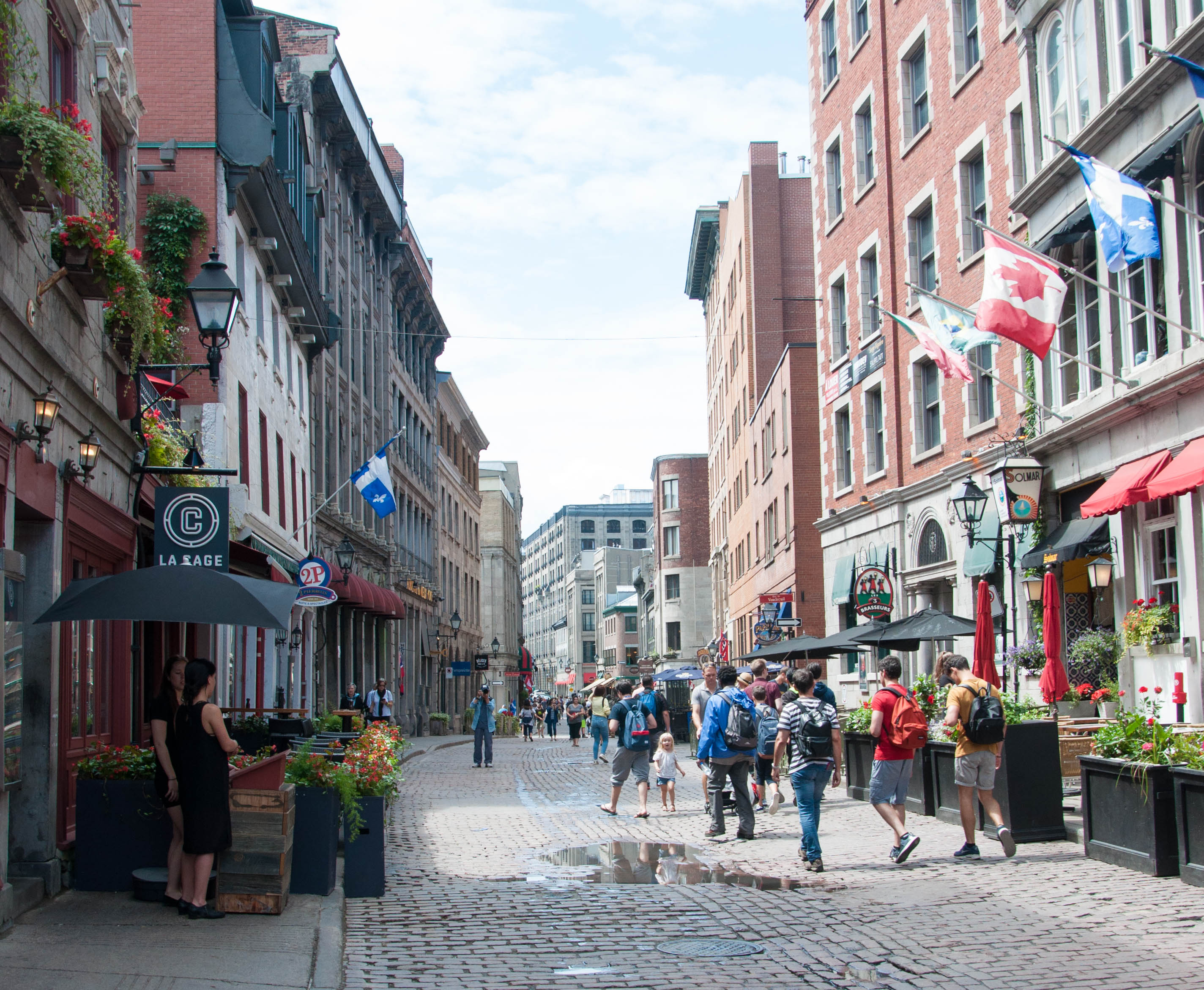 Why You Need To Take a Historical Walking Tour of Old Montreal