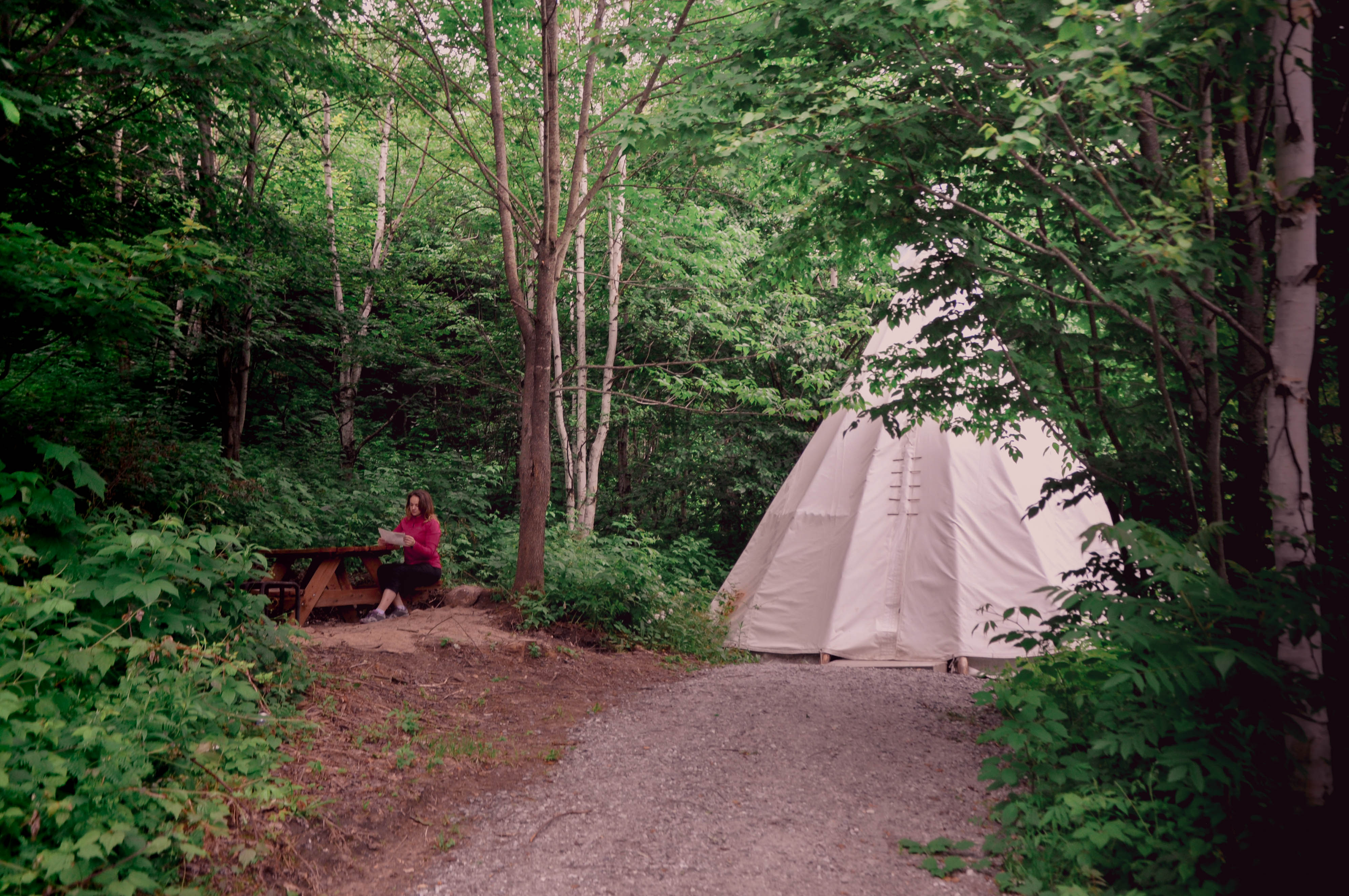 A Complete Guide to Camping at Parc Omega