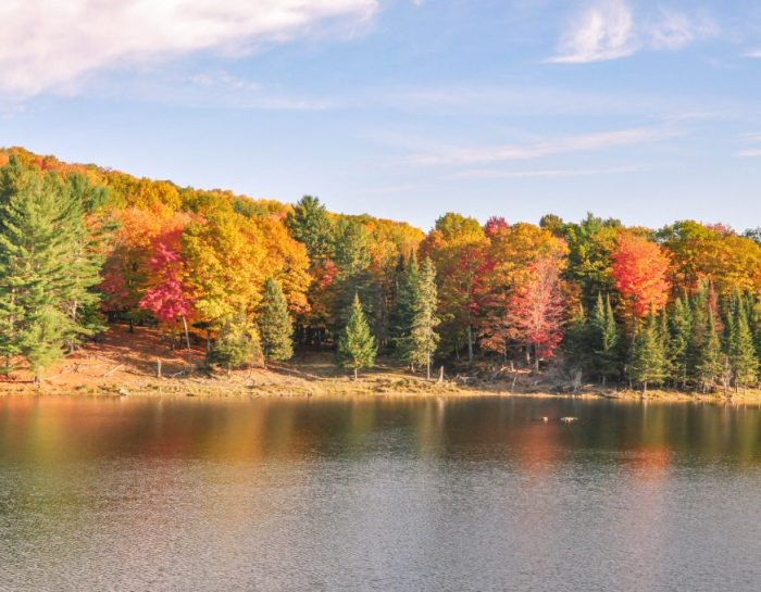 Ottawa Fall Colours: The Best Places and Day Trips