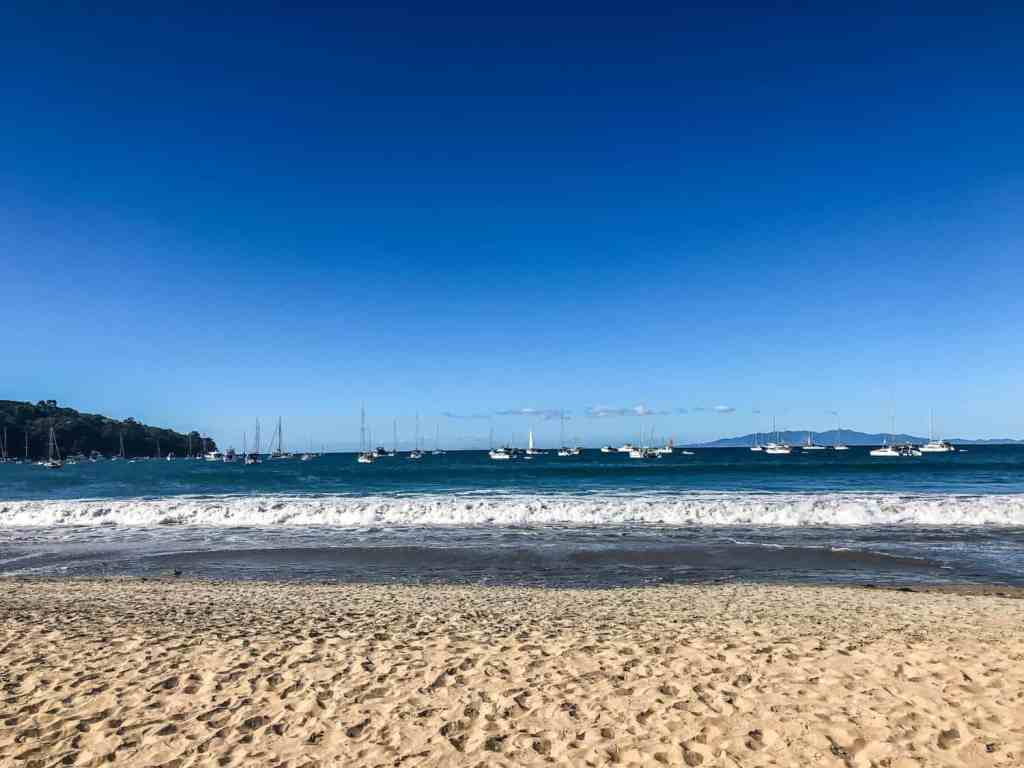 What to do in Waiheke