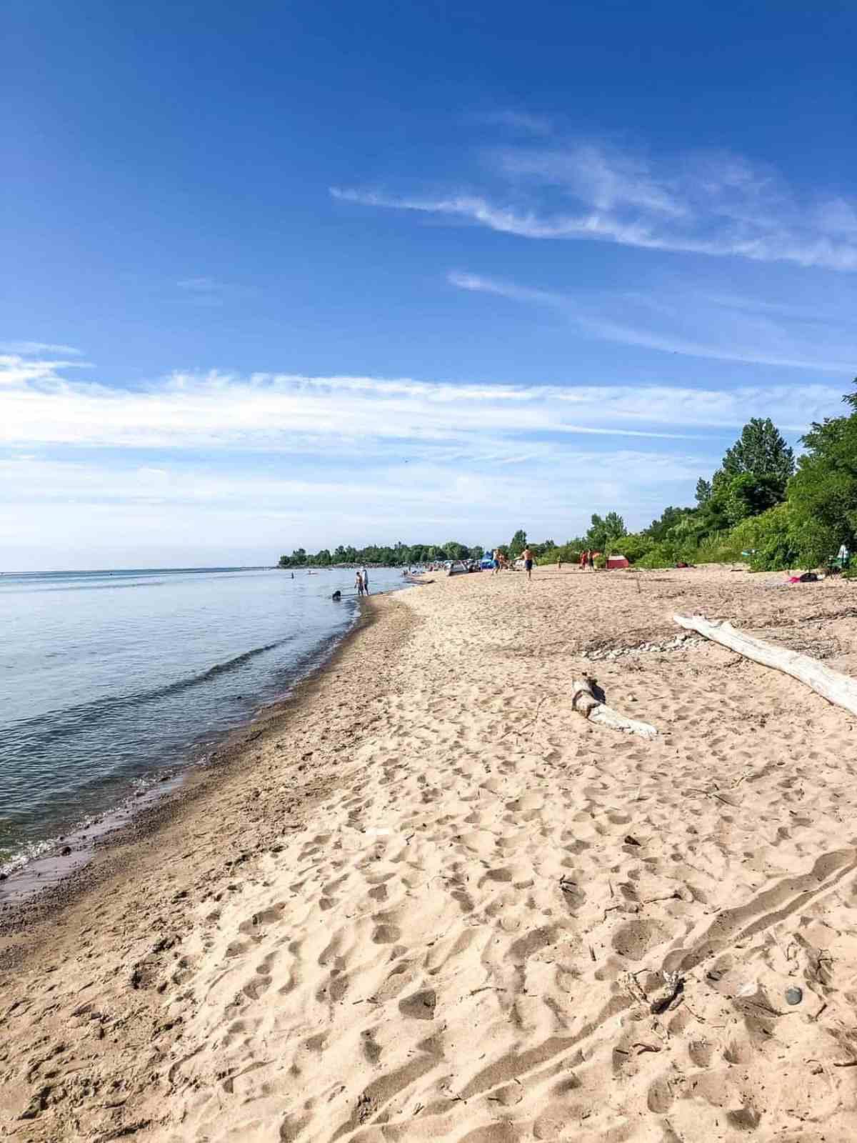 Scarborough Bluffer's Park Beach