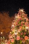 クリスマスツリーを買うタイミングって?子どもが生まれたとき?