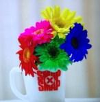 SMAP×SMAPのラストシーン~世界に一つだけの花の中居君の指に感動!そのメッセージとは?