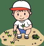 夏休みのPTA活動~小学校や中学校の除草作業行きたくないが・・・