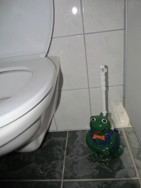 Toilet brush frog
