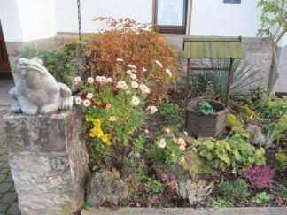 Frogs in Zur Warte's garden