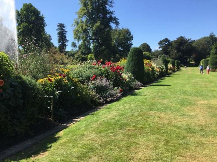 Summer Fruits, Friends and Gardens…