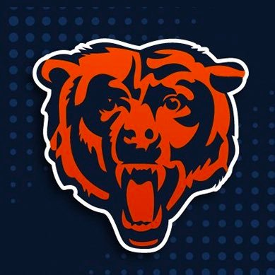 Chicago Bears Season Review