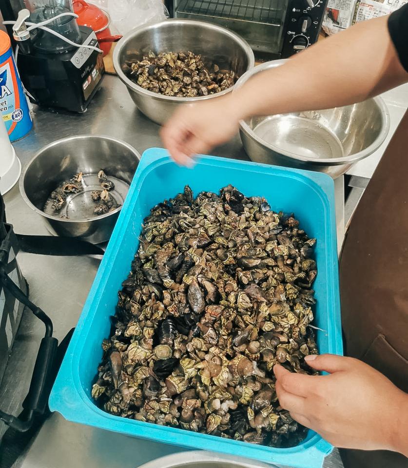 礁岩採拓-收穫滿滿