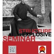 Structure & Explosive Force Seminar, JustKnow Luzern, Switzerland, 2014
