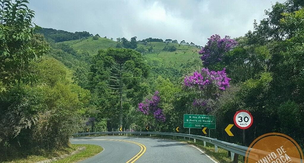 Estrada Paray Cunha