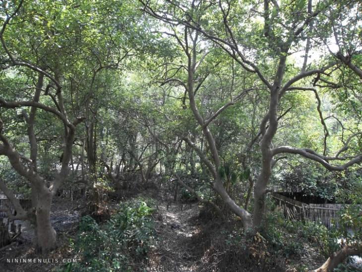 gambar taman wisata alam angke kapuk jakarta utara