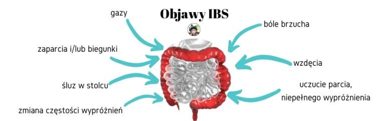 IBS - zespół jelita nadwrażliwego - ibs