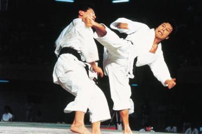 _karate_kick