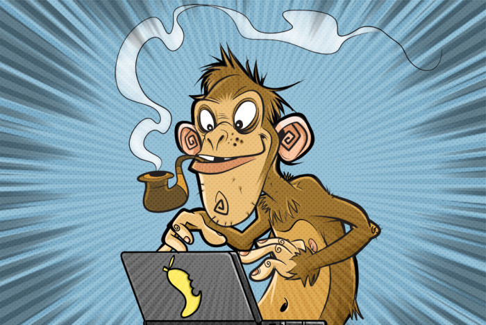 Monkey with a Laptop image