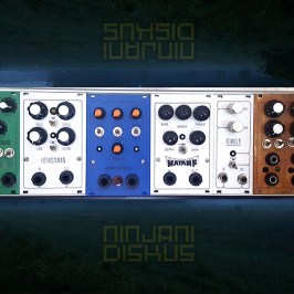 Guitar/Bass Modular Ninjani Projects