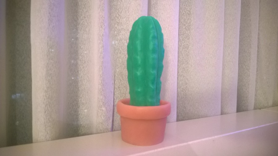 Pedro the Cactus on a windowsill