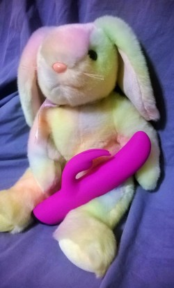 Stuffed Bunny holding rabbit vibe