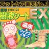 足裏樹液シートの効果。genki樹液シートEXの評判と口コミ