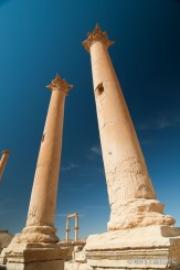 Palmyra-22