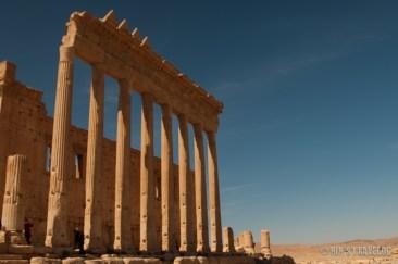 Palmyra-8